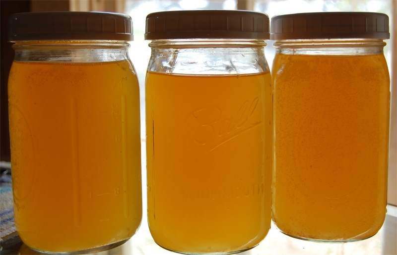 Kombucha by Sandra (via flickr)